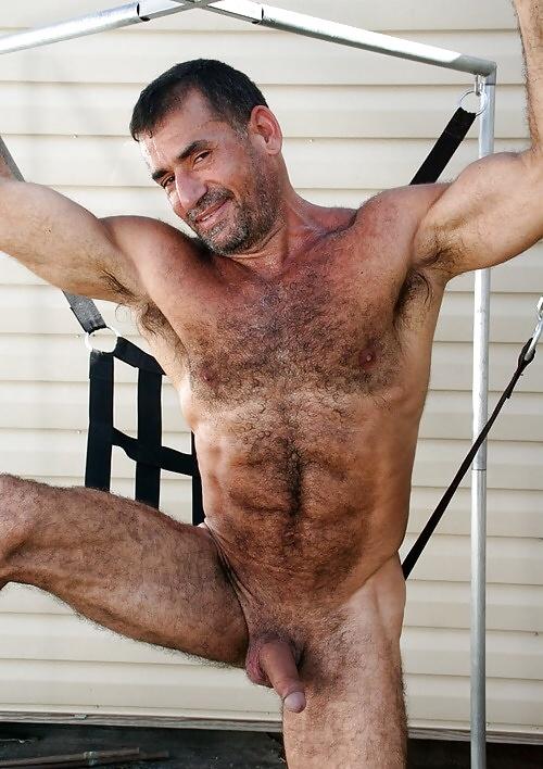Free gay muscle men galleries