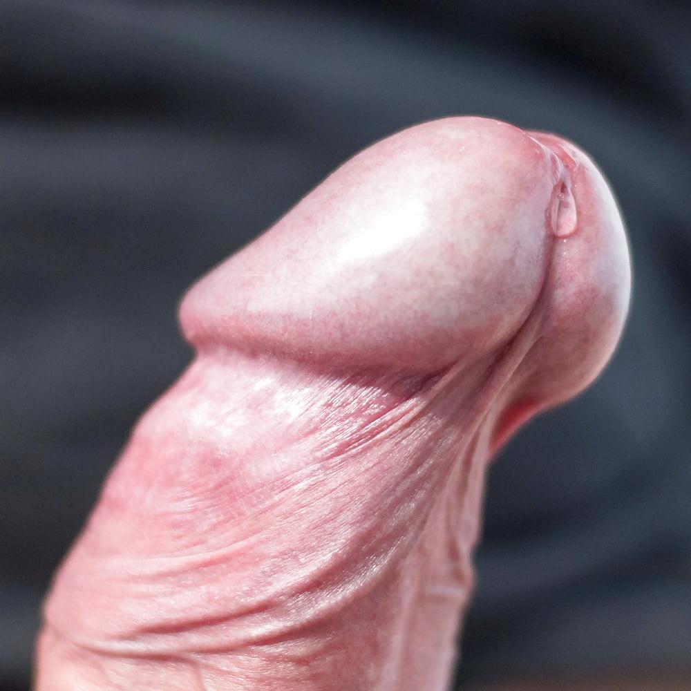 Penis with precum