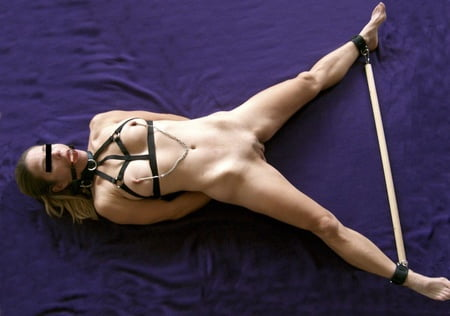 leg restraints for sex play in Chicago