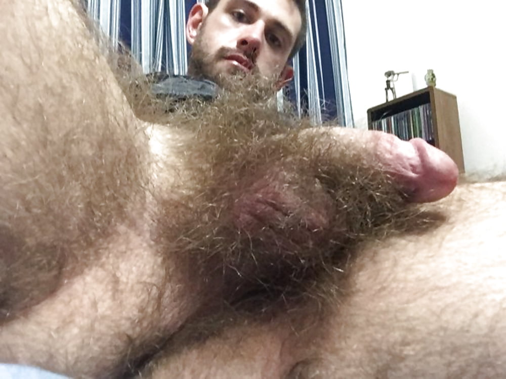 Close up licking hairy balls