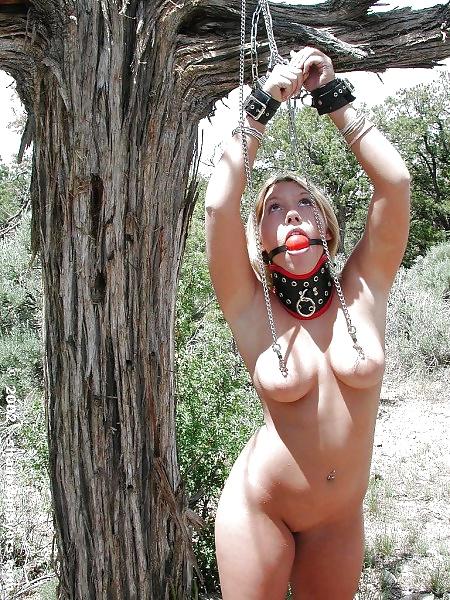 Spanking Im Wald