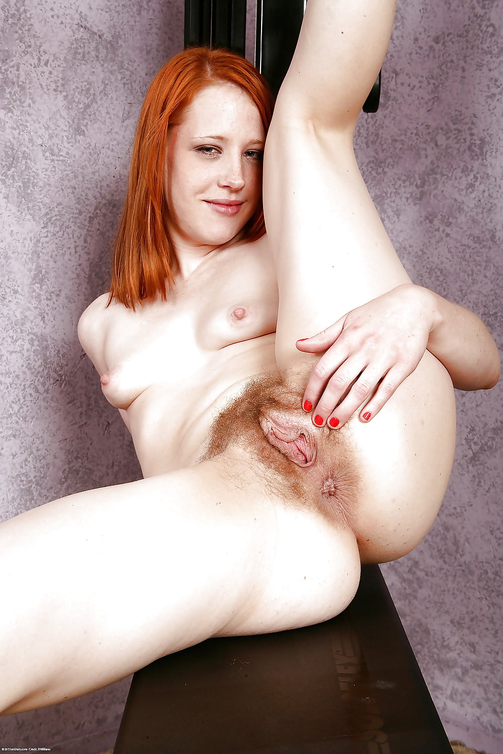Very Hairy Ginger Bush Creampie Closeup Red Hair Pussy Sliding Screw Pov Tnaflix Porn Pics