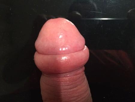 Porno Eichel