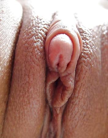 Pics of a womans clitoris
