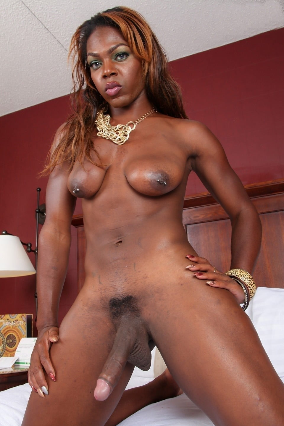 free-amateur-black-shemales-best-ass-and-boobs