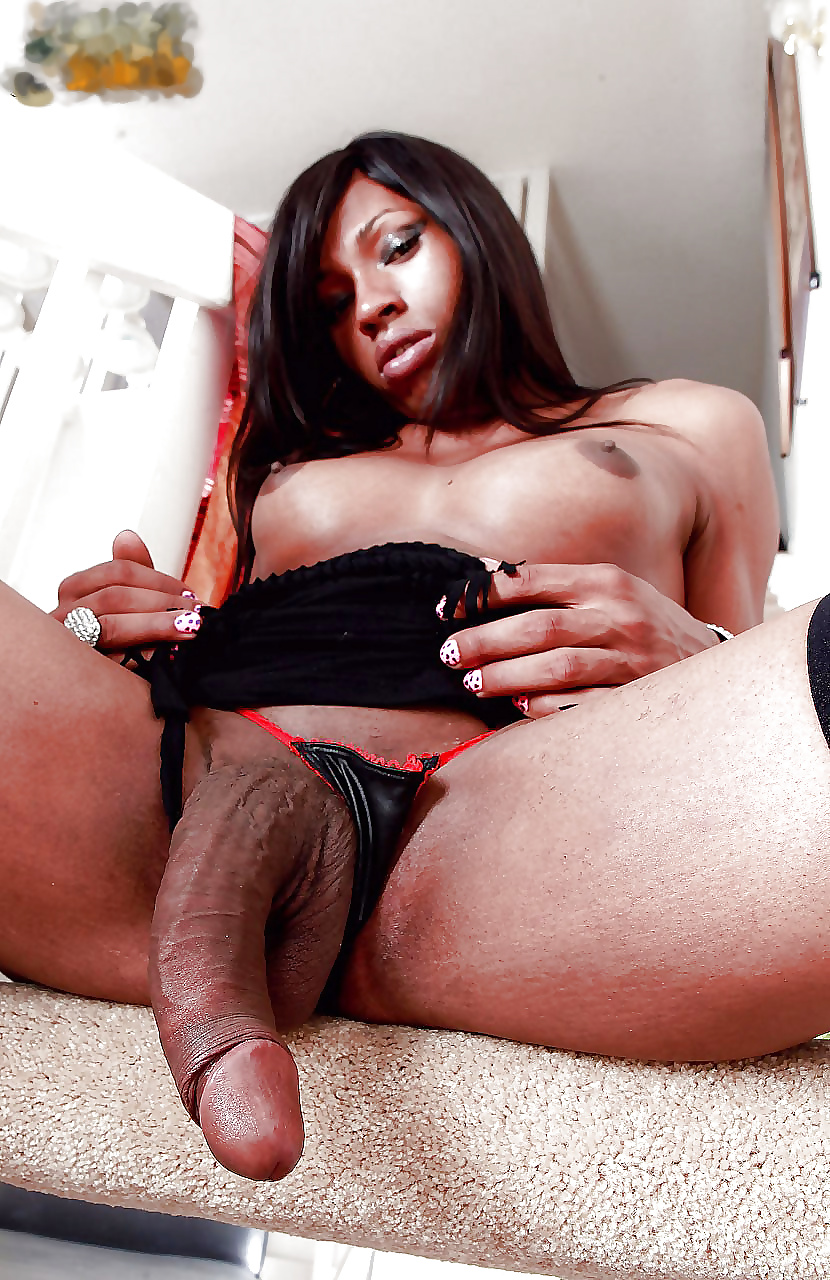 Men tranny eiffel towered by black cocks