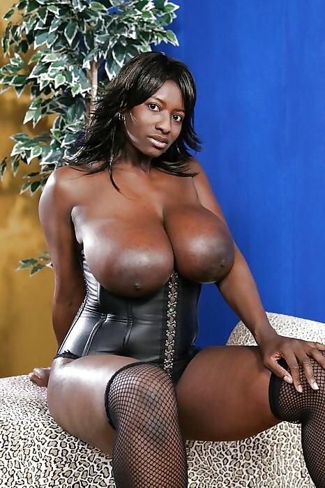 Big black tits and ass pics