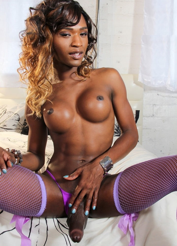 Hung Black Tgirl Webcams And Redcam Galery Black Shemale