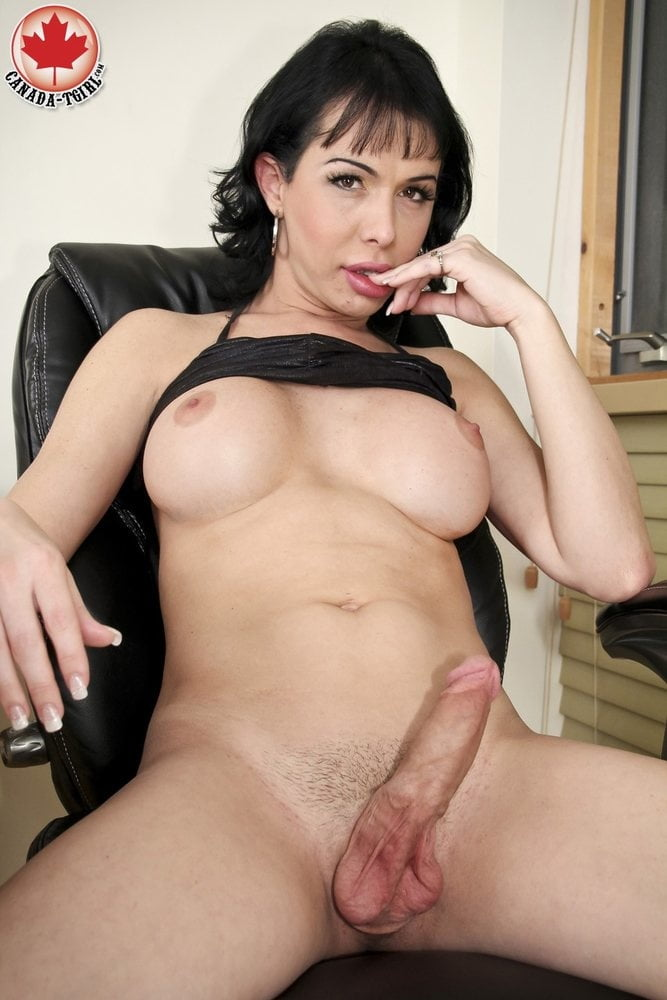 Sexy shemale milfs — pic 2