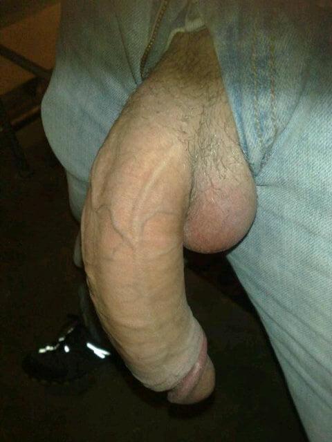 Xxl Dick