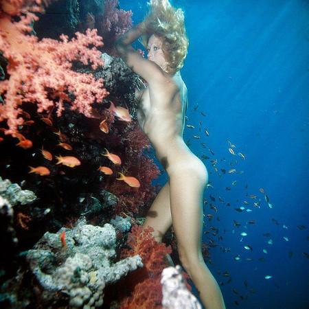 Nude Nude Scuba Diving Videos Png
