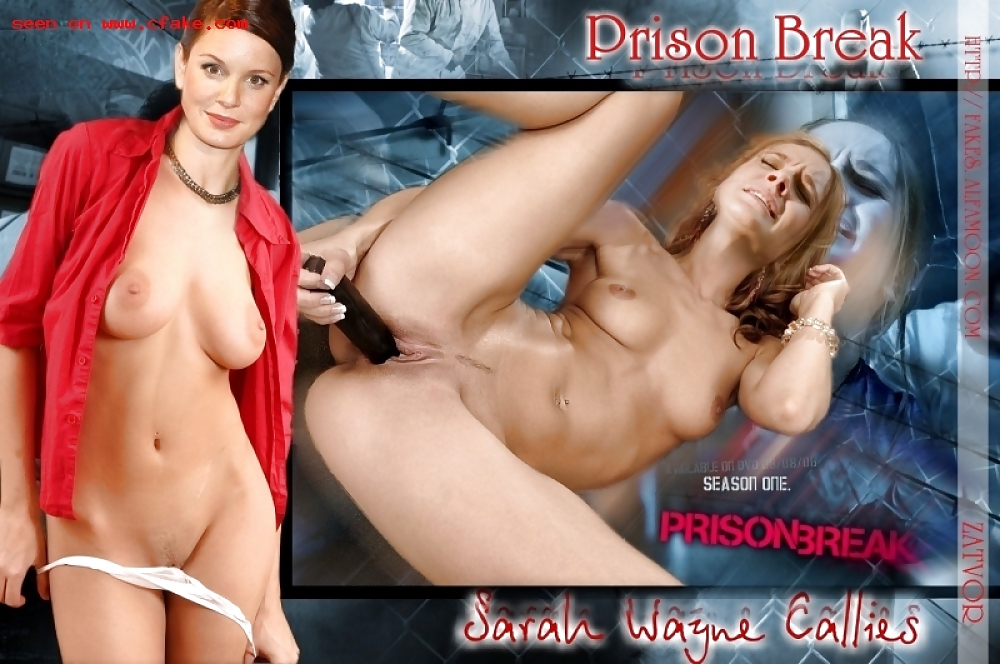 Prison break sex 13