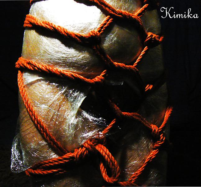Rope bondage femdom