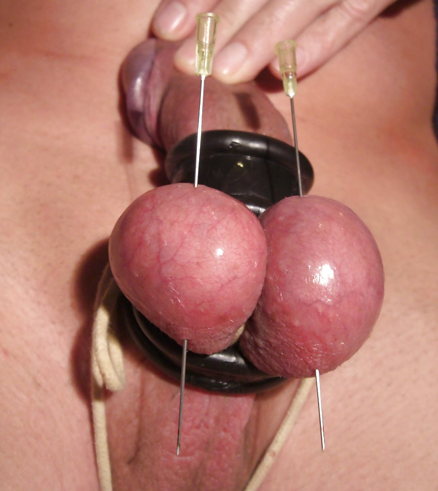 Free home made testicle bdsm, john holmes big cock swings