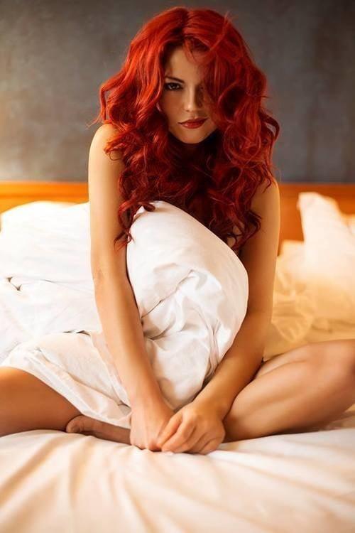 Redheads 5